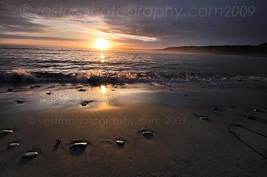 photograph of Waves on Sligo beach at sunset