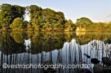 River Bann Autumn framed photo